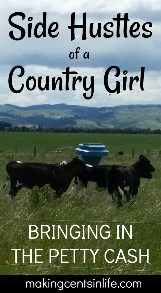 Side hustles with a difference! When living in the remote countryside there are many side hustles a country girl can do to help bring in a little extra petty cash. How many of these would you be keen to try?