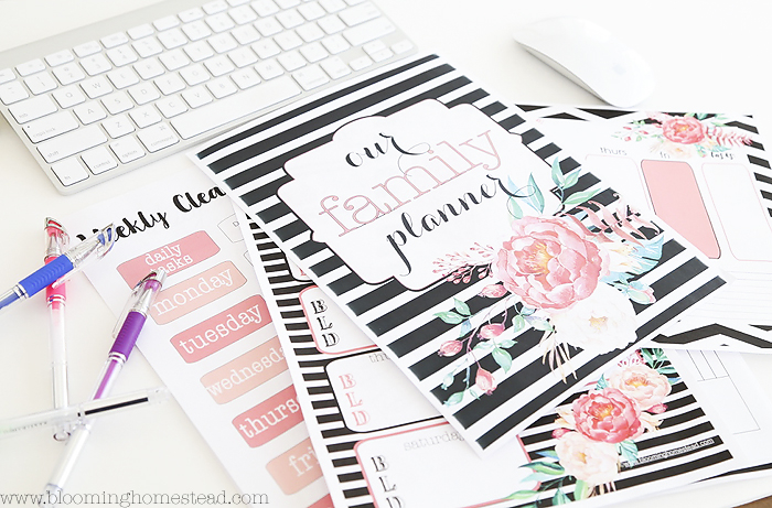 Home Organization Printables