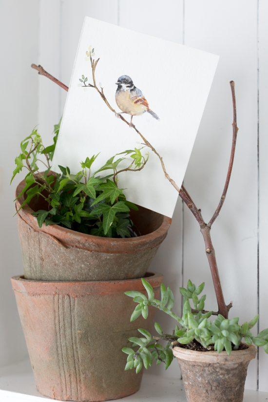Spring Bird Watercolor Printable