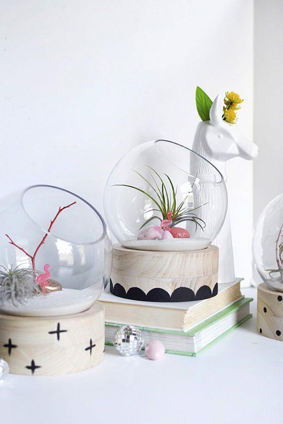 DIY Modern Terrarium
