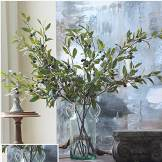 Farmhouse Olive Branches