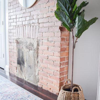 My Two Favorite Faux Indoor Houseplants