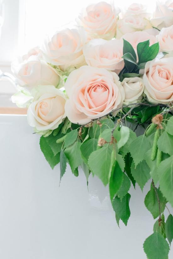 green leaves, soft pink roses