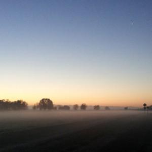 visalia_fog