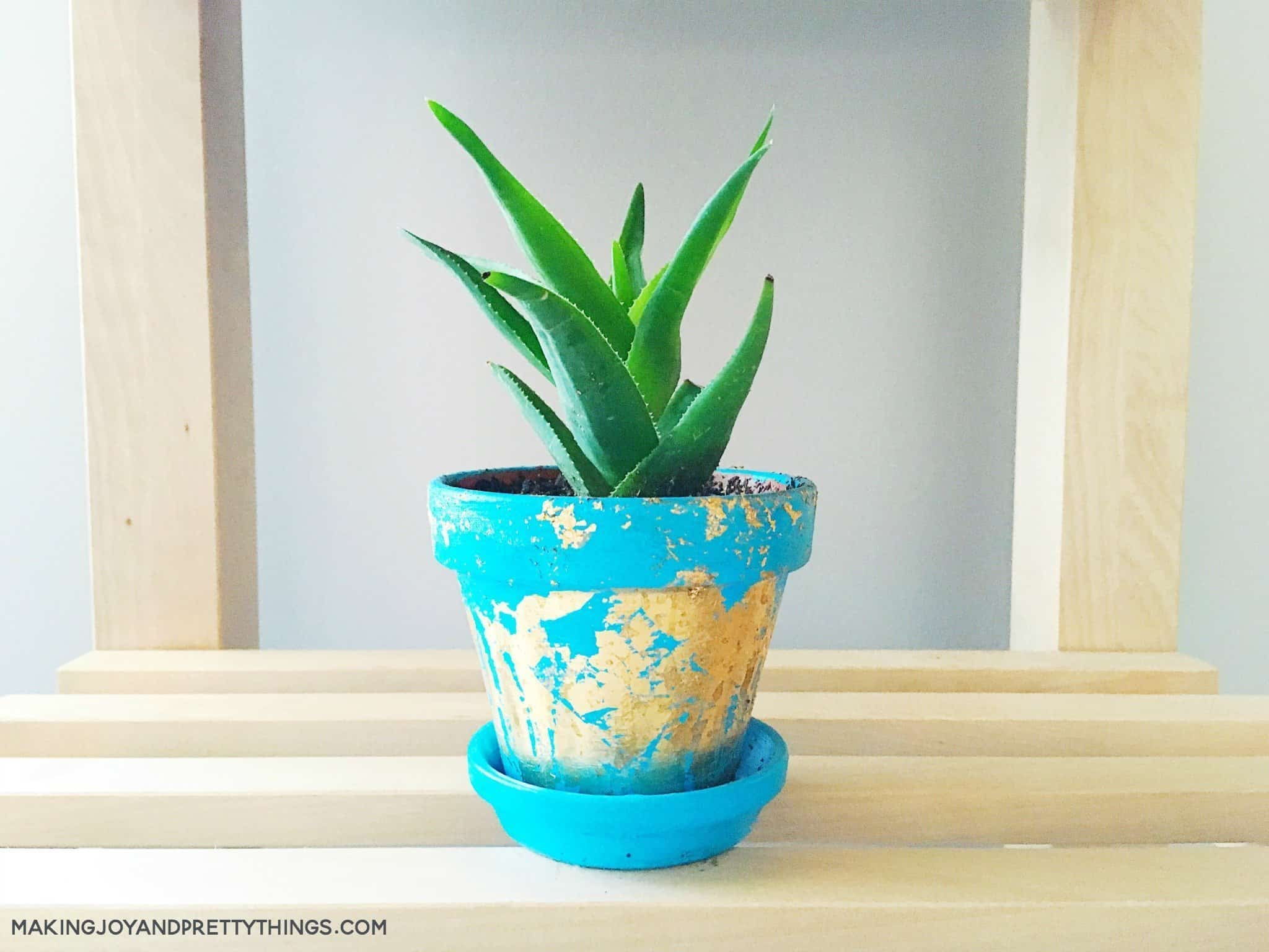 DIY Gold Foil Painted Pots or planters. Easy DIY craft to make for spring and summer. Would make great DIY gift for friends or teachers! Plant with succulents or small plants to bring some greenery into your home