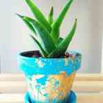 DIY Gold Foil Painted Pots