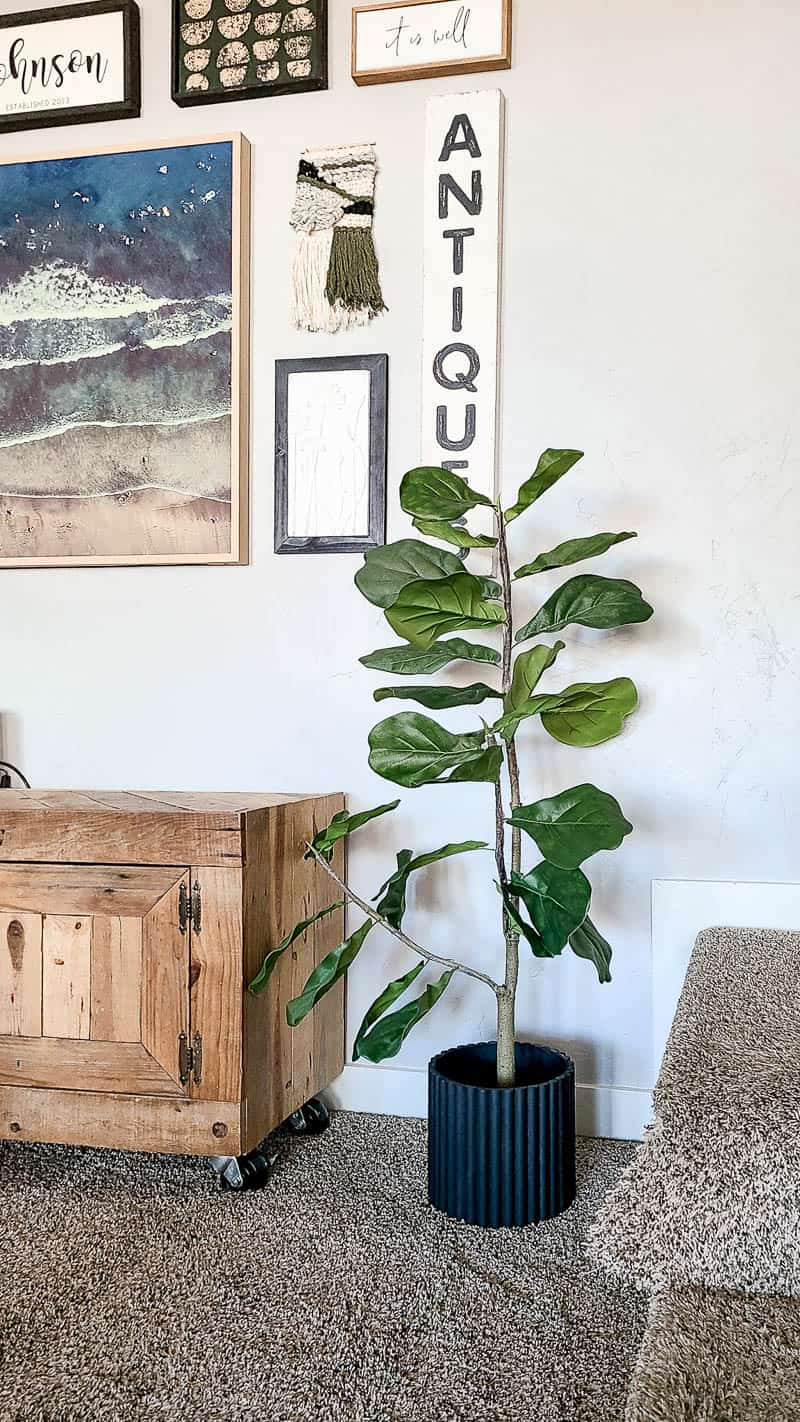 shows a textured planter with a tree next to a cabinet