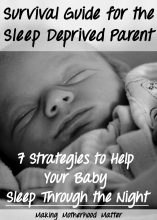 Survival Guide for the Sleep Deprived Parent