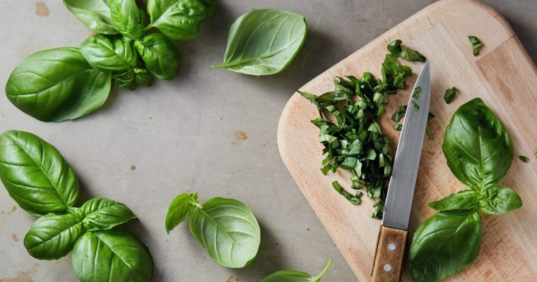 How to Make The Best 20 Fresh Basil Recipes