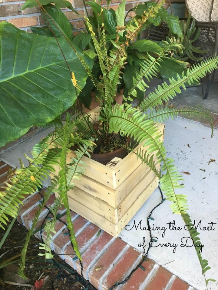 left planter