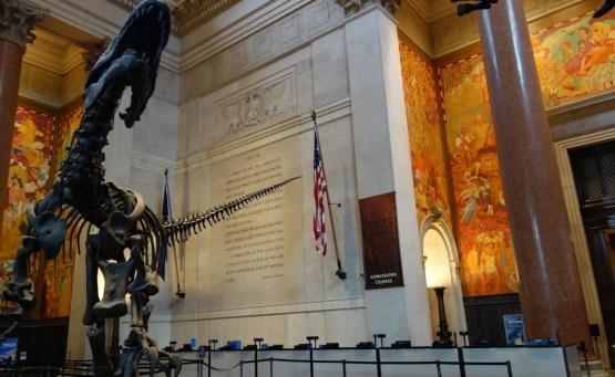 new york gratuit musée