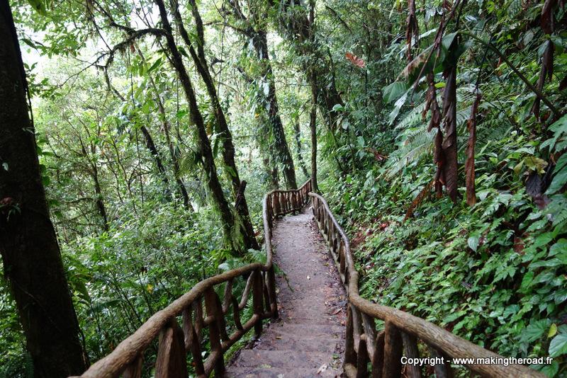 randonnée parc national volcan tenorio