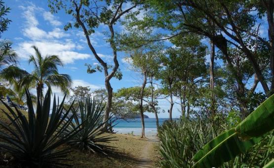 playa azucar portero road trip Costa Rica itineraire 3 semaines - Playa Azucar se baigner et snorkelling lieu incontournable