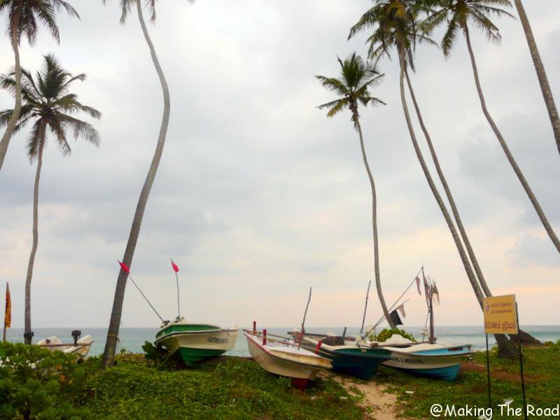 guide sri lanka 3 semaines février mars tourisme danger plage mirissa coup de coeur