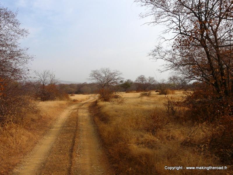 itinéraire inde voir des tigres safari parc national ranthambore