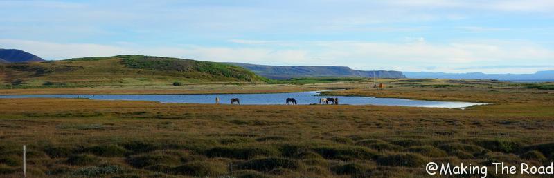 Kópasker visiter nord islande blog voyage