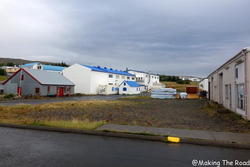 Hvammstangi islande phoque