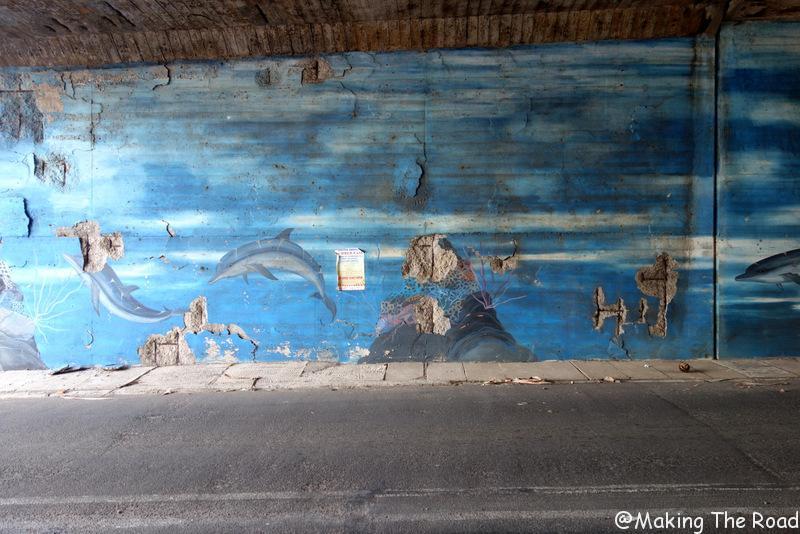 afrique du sud aliwal shoal guide afrique du sud