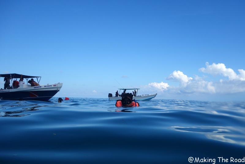 isla del caño snorkeling costa rica blog