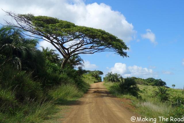 visiter Isimangaliso St Lucia Afrique du Sud cap vidal