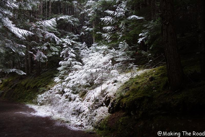 parc national de banff randonnée pédestre