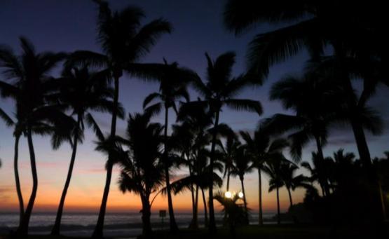 itinéraire réunion maurice 3 semaines st joseph crabe la réunion belle plage ou se baignerque faire à la reunion
