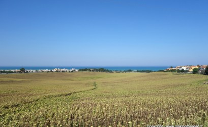 destination italie tourisme porto recanati