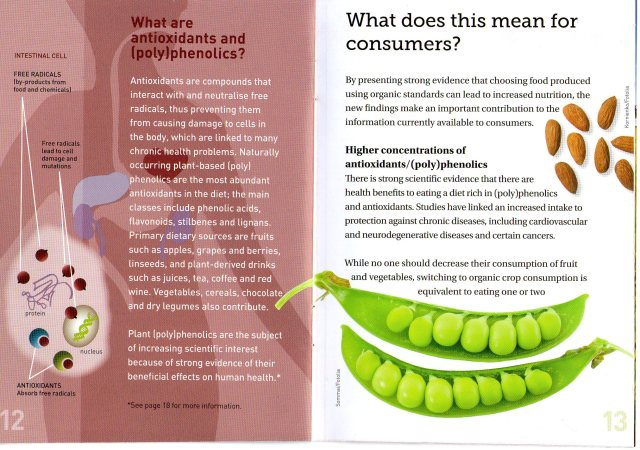 THE DIFFERENCE BETWEEN ORGANIC AND NON-ORGANIC FOOD - PAGE 7