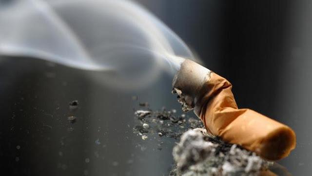 Kamu Perokok Berat? Ini Dia 5 Cara Efektif Untuk Membersihkan Paru-Paru
