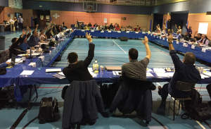 Vote-Inuit-Resolution