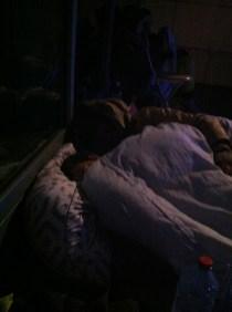 Zasnęli