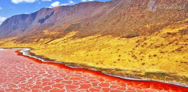 Natron-Golu Renkli ve İnanılmaz Dünya Manzaraları