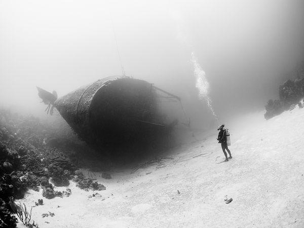 diver-wreck-bonaire_90424_600x450 2015 Yılı National Geographic