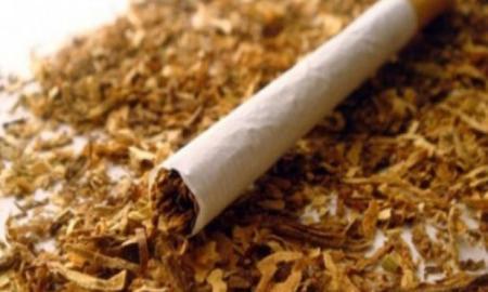 nikotin-sigara