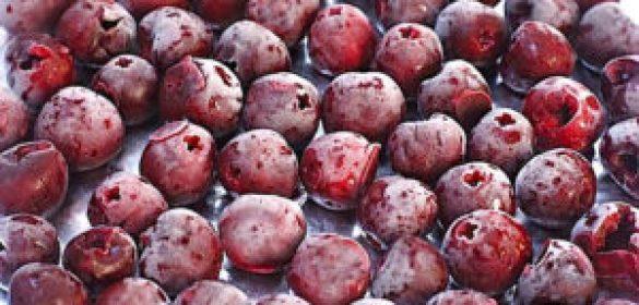 Derin Dondurucunuzda Saklayabileceğiniz Yaz Sebze ve Meyveleri