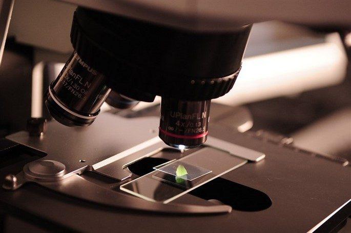 Mikroskop'un Tarihi Ve İlk Kullanışı Nasıl Ortaya Çıktı?