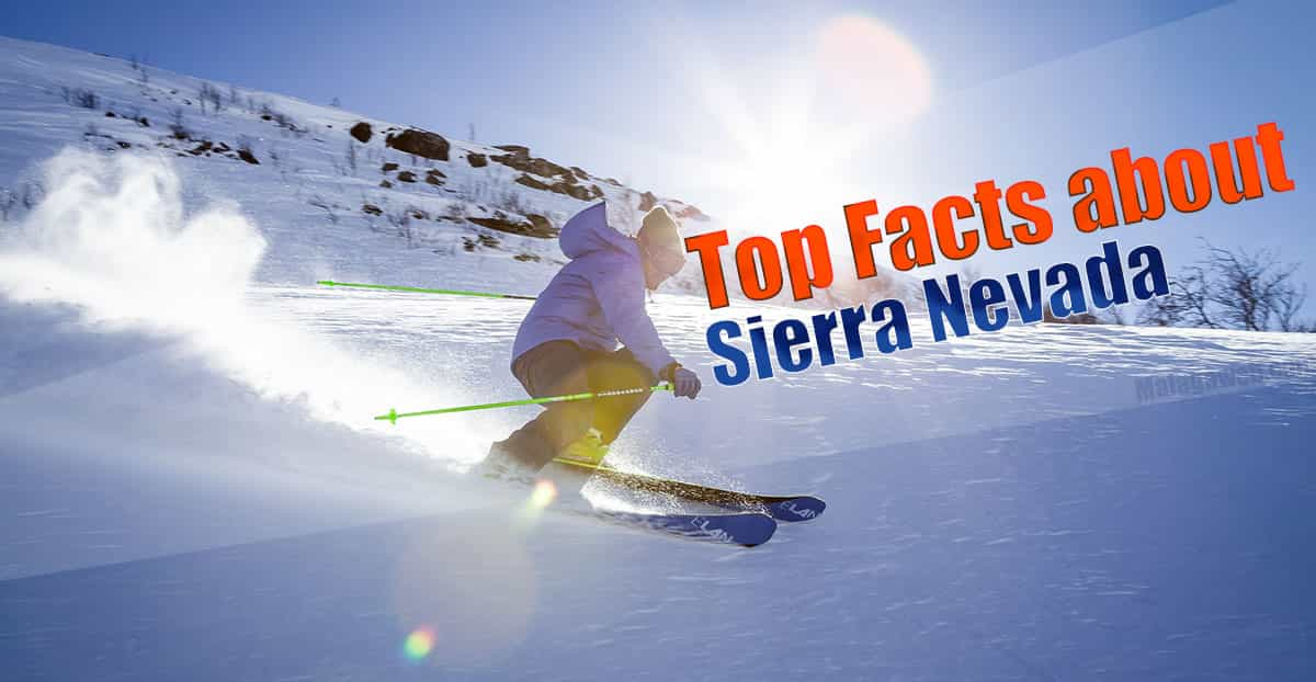 Top facts about Sierra Nevada