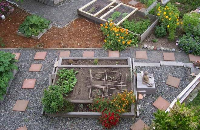 Urban Garden for healthy and sustainable living