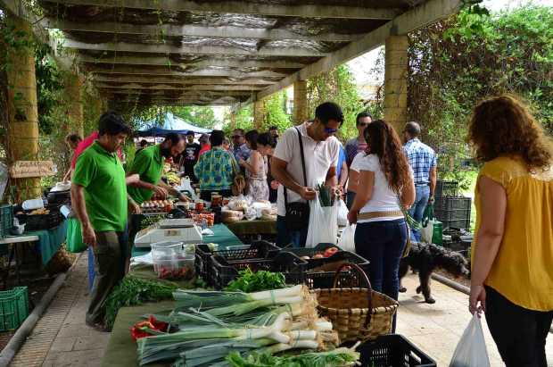 Mercadillo ecológico en Málaga