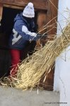 Hom STrom Scuol Switzerland Straw being thrown out of a barn