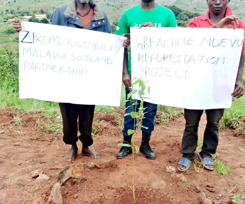 YOUNG LEADER FOR CLIMATE CHANGE IS PROMOTING TREE PLANTING FOR ENVIRONMENTAL REHABILITATION.