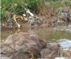One of polluted rivers in Blantyre