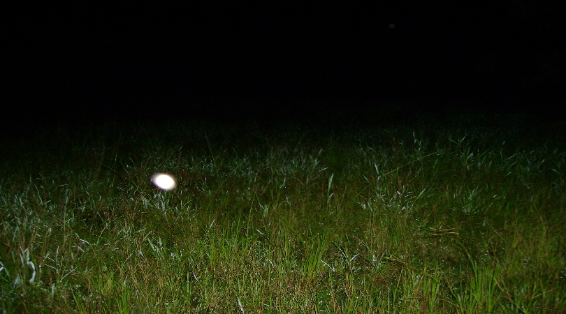 A glowing ghost orb in an open field.