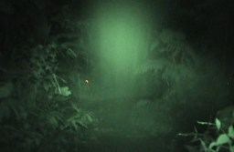 A spirit standing in front of the video with quite a distinct shoulder.