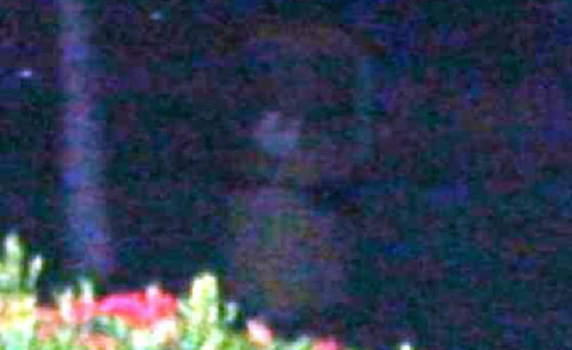 Enhanced zoomed photo of full-bodied ghost apparition.