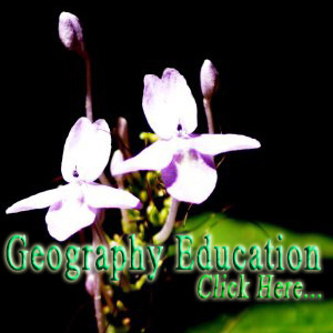 Geography Education