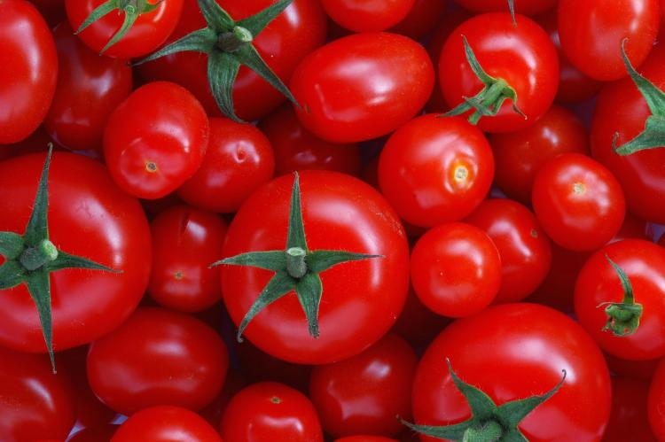Tomatoes and antioxidants can benefit male fertility