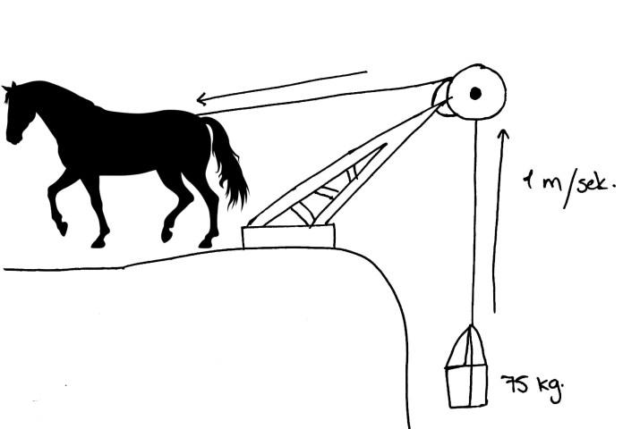 Hest trækker lod