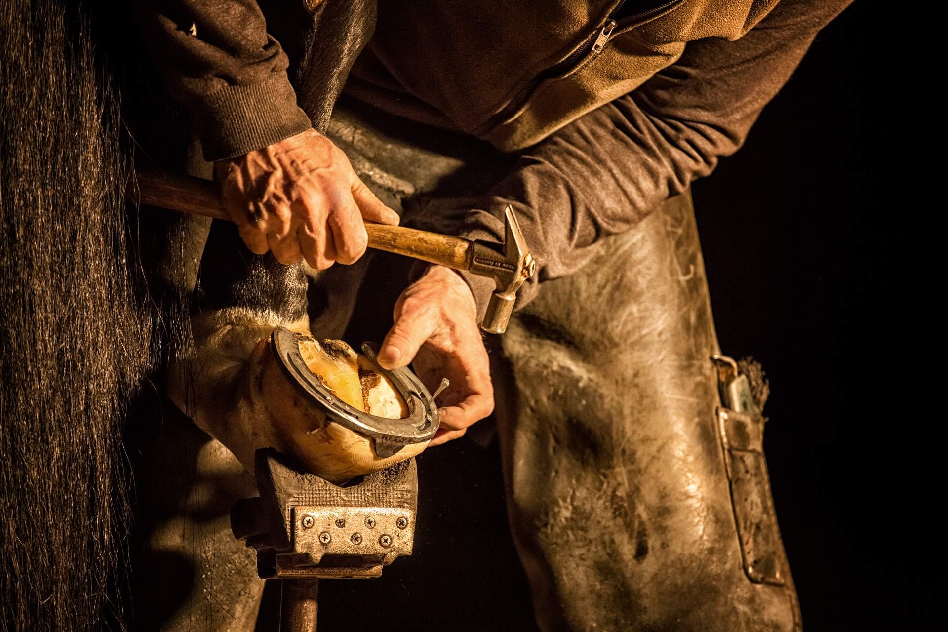 Smed lægger sko på hest