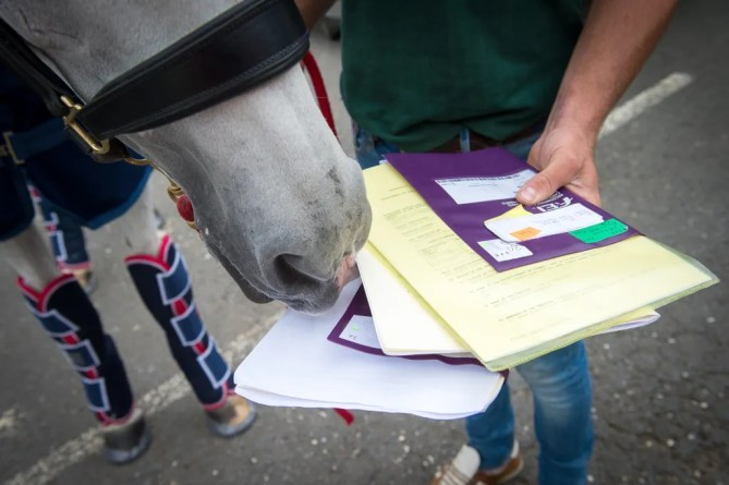 Every horse heading out to the Rio 2016 Olympic Games travels with its own passport - 29 July 2016 - Pic Jon Stroud